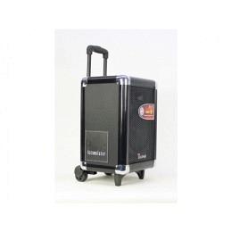 mobiler lautsprecher mit akku usb sd mp3 bluetooth led 50w tj one tr 800 portable. Black Bedroom Furniture Sets. Home Design Ideas